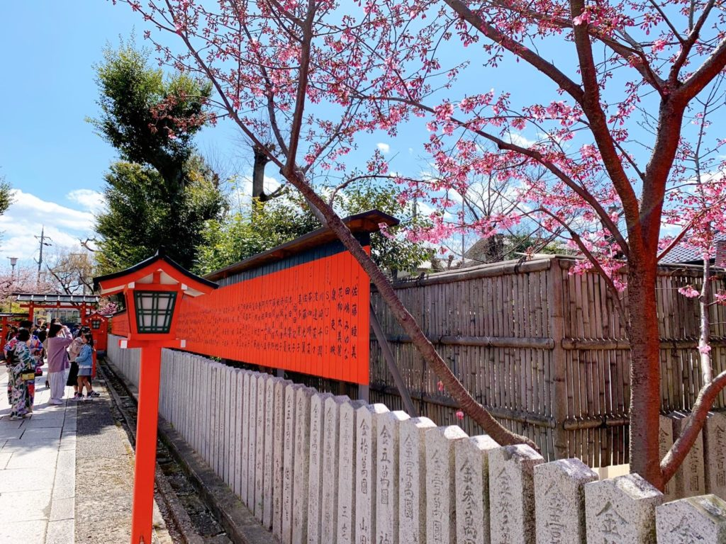 車折神社 桜 開花 見頃 種類